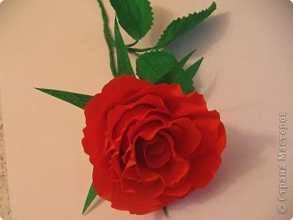 Мастер-класс Моделирование: Алая роза Бумага гофрированная