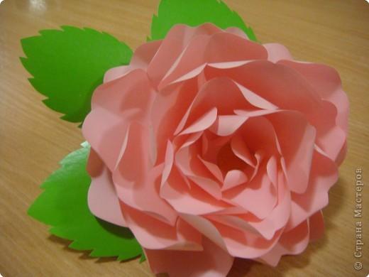 Мастер-класс Бумагопластика: Мк. Роза из ксероксной бумаги Бумага 8 марта, Валентинов день, День матери, День рождения. Фото 1