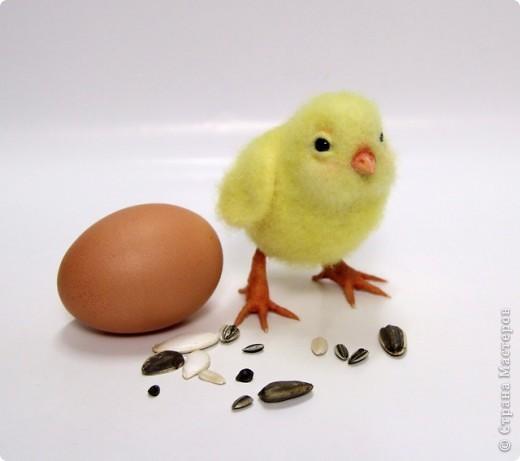 Игрушка Валяние (фильцевание): Цыпленок Миня. Шерсть Пасха. Фото 1