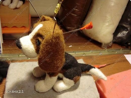 Мастер-класс Валяние (фильцевание): мастер-класс по щеночку бигли. Часть 2. Шерсть Дебют. Фото 39