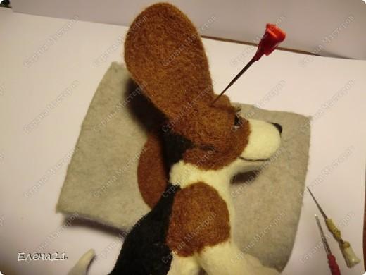 Мастер-класс Валяние (фильцевание): мастер-класс по щеночку бигли. Часть 2. Шерсть Дебют. Фото 42
