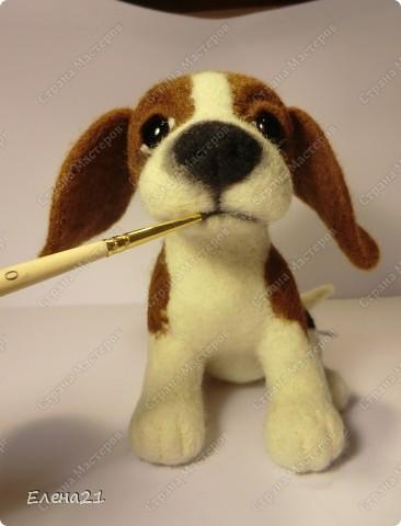 Мастер-класс Валяние (фильцевание): мастер-класс по щеночку бигли. Часть 2. Шерсть Дебют. Фото 45