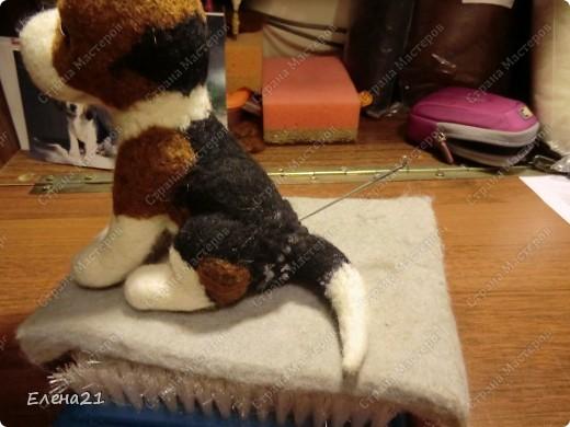 Мастер-класс Валяние (фильцевание): мастер-класс по щеночку бигли. Часть 2. Шерсть Дебют. Фото 26