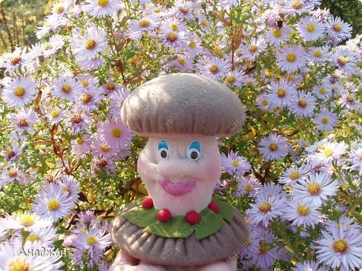 Куклы, Мастер-класс, Поделка, изделие Шитьё: Игольница-грибок с тайничком +МК Нитки, Ткань. Фото 1