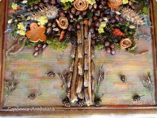 Мастер-класс Поделка изделие Ассамбляж Панно из природных материалов+небольшой МК Материал природный Трубочки коктейльные фото 5