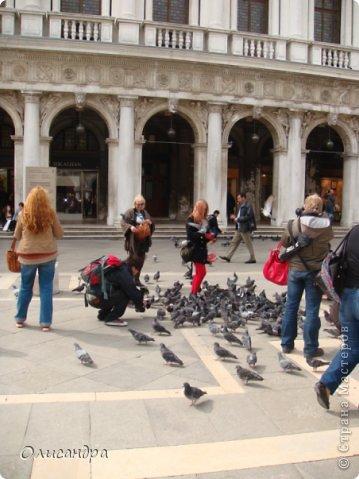 Мы едем в Венецию. Это была моя мечта ,я думала,что несбыточная... На этом катере  домчались туда за 20 минут и 7,5 евро.... Фото 6