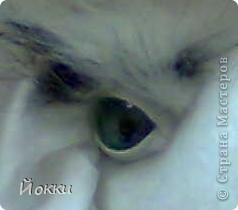 Глаза зверика.МК. Фото 1