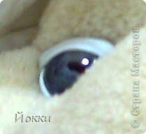 Глаза зверика.МК. Фото 3