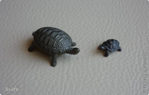 Продолжаю показывать своих черепашек. Начало можно посмотреть здесь http://stranamasterov.ru/node/151515. Фигурки куплены нами или подарены друзьями и родными, поэтому попадаются вроде бы одинаковые, но разного оформления. Рассказы о черепахах, как о живых или мифических существах или о символах предлагаю почитать у Олиандры.   Решила начать с микрораздела.  Это броши. . Фото 10