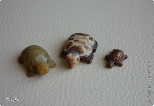 Продолжаю показывать своих черепашек. Начало можно посмотреть здесь http://stranamasterov.ru/node/151515. Фигурки куплены нами или подарены друзьями и родными, поэтому попадаются вроде бы одинаковые, но разного оформления. Рассказы о черепахах, как о живых или мифических существах или о символах предлагаю почитать у Олиандры.   Решила начать с микрораздела.  Это броши. . Фото 12