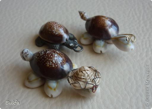 Продолжаю показывать своих черепашек. Начало можно посмотреть здесь http://stranamasterov.ru/node/151515. Фигурки куплены нами или подарены друзьями и родными, поэтому попадаются вроде бы одинаковые, но разного оформления. Рассказы о черепахах, как о живых или мифических существах или о символах предлагаю почитать у Олиандры.   Решила начать с микрораздела.  Это броши. . Фото 9