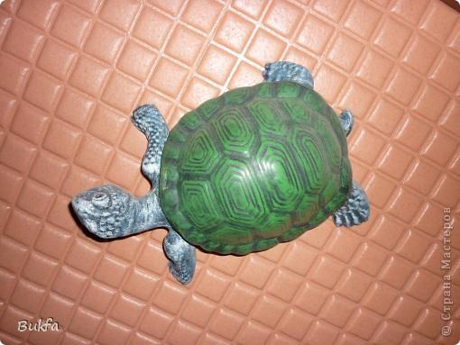Это моя первая черепаха С нее началась коллекция. Увидела ее сама в палатке и не смогла пройти мимо: смотрела прямо мне в глаза и просилась к нам домой. Взяла ее, посадила в сумку, принесла домой. Поселилась она на стене в коридоре. Так и встречаетнас с тех пор, ждет, и мы торопимся к ней.. Фото 2