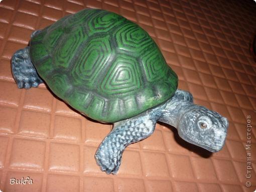Это моя первая черепаха С нее началась коллекция. Увидела ее сама в палатке и не смогла пройти мимо: смотрела прямо мне в глаза и просилась к нам домой. Взяла ее, посадила в сумку, принесла домой. Поселилась она на стене в коридоре. Так и встречаетнас с тех пор, ждет, и мы торопимся к ней.. Фото 3