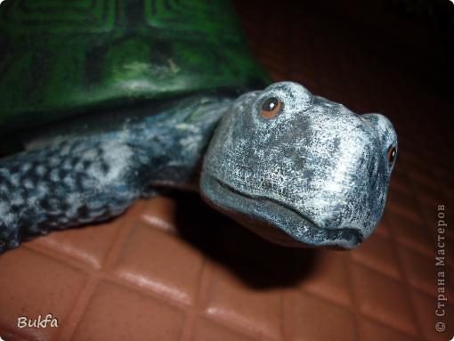 Это моя первая черепаха С нее началась коллекция. Увидела ее сама в палатке и не смогла пройти мимо: смотрела прямо мне в глаза и просилась к нам домой. Взяла ее, посадила в сумку, принесла домой. Поселилась она на стене в коридоре. Так и встречаетнас с тех пор, ждет, и мы торопимся к ней.. Фото 1