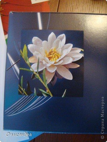 """Девочки! Как называется этот цветок? ******************************************* Окрыленная положительными отзывами, решила повторить свой эксперимент... и сделать еще одну открытку-стойку... Т.е. хотела ,просто, повторить то,что уже делала,но с другой картинкой... http://stranamasterov.ru/node/215641  Т.е. думать не хотелось, хотелось сделать быстренько... Но, кажется, быстренько я не умею...  Опять """"муки творчества"""" длились до середины ночи.... Фото 4"""