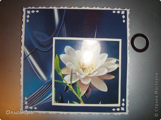 """Девочки! Как называется этот цветок? ******************************************* Окрыленная положительными отзывами, решила повторить свой эксперимент... и сделать еще одну открытку-стойку... Т.е. хотела ,просто, повторить то,что уже делала,но с другой картинкой... http://stranamasterov.ru/node/215641  Т.е. думать не хотелось, хотелось сделать быстренько... Но, кажется, быстренько я не умею...  Опять """"муки творчества"""" длились до середины ночи.... Фото 8"""