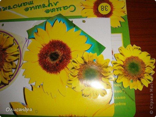 """Девочки! Как называется этот цветок? ******************************************* Окрыленная положительными отзывами, решила повторить свой эксперимент... и сделать еще одну открытку-стойку... Т.е. хотела ,просто, повторить то,что уже делала,но с другой картинкой... http://stranamasterov.ru/node/215641  Т.е. думать не хотелось, хотелось сделать быстренько... Но, кажется, быстренько я не умею...  Опять """"муки творчества"""" длились до середины ночи.... Фото 9"""