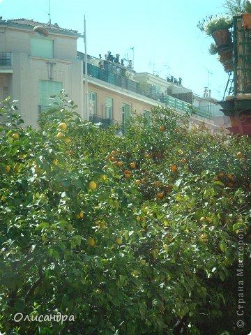 Ницца – один из красивейших уголков Франции, была основана в 5 веке до н. э. греками. Название произошло от имени богини победы – Ники.  В 19 веке отдыхать в Ницце полюбила сначала английская, а потом и французская аристократия. . Фото 4