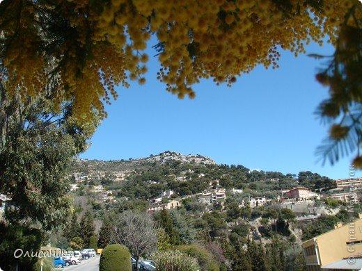 Ницца – один из красивейших уголков Франции, была основана в 5 веке до н. э. греками. Название произошло от имени богини победы – Ники.  В 19 веке отдыхать в Ницце полюбила сначала английская, а потом и французская аристократия. . Фото 55