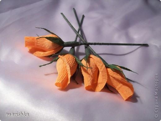 Мастер-класс, Свит-дизайн Бумагопластика: Мои бутончики роз МК Бумага гофрированная. Фото 18