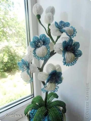"""Мастер-класс Бисероплетение: Орхидея""""Чудесное мгновение""""+МК Бисер, Гипс, Проволока. Фото 1"""