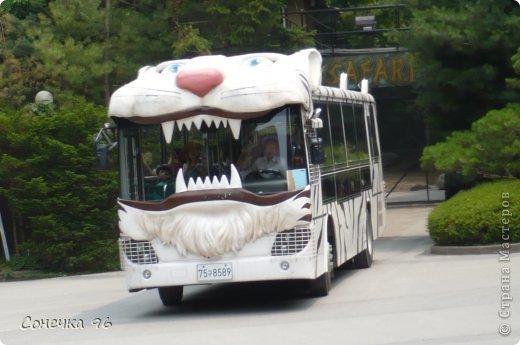 Фоторепортаж: Южная Корея (часть 2) Экскурсия. Фото 27