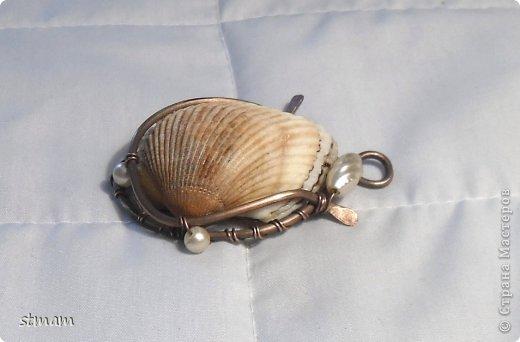 Мастер-класс Плетение: Оплетение ракушки Проволока. Фото 1