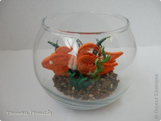 Золотая рыбка. Бумажные полосы. Фото 57