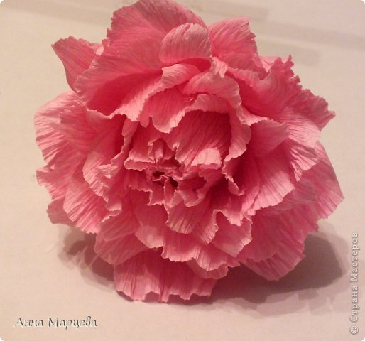 Мастер-класс, Свит-дизайн Бумагопластика: Обещанный МК, но только по розе пока Бумага гофрированная, Клей Дебют. Фото 1