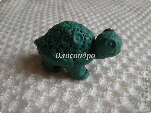 """Это моя вторая черепашка... Первая здесь... http://stranamasterov.ru/node/145175?t=670  Часто говорят ...""""позеленел от злости""""- это не про нее, она добрая..., а зовут Гена... в честь крокодила Гены ( такой замечательный мультик...). Фото 1"""