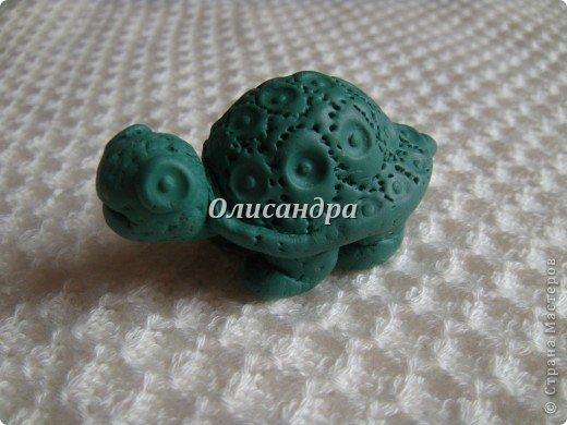 """Это моя вторая черепашка... Первая здесь... http://stranamasterov.ru/node/145175?t=670  Часто говорят ...""""позеленел от злости""""- это не про нее, она добрая..., а зовут Гена... в честь крокодила Гены ( такой замечательный мультик...). Фото 3"""