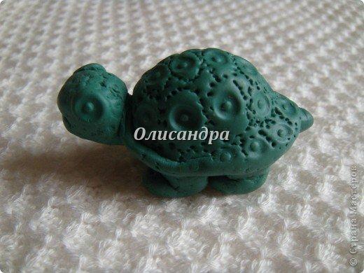 """Это моя вторая черепашка... Первая здесь... http://stranamasterov.ru/node/145175?t=670  Часто говорят ...""""позеленел от злости""""- это не про нее, она добрая..., а зовут Гена... в честь крокодила Гены ( такой замечательный мультик...). Фото 4"""