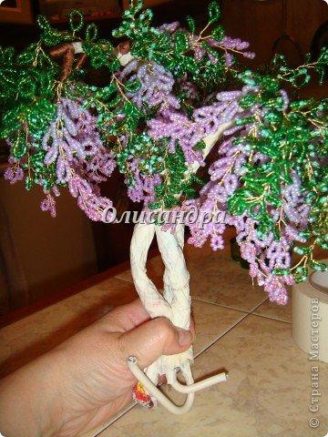 """Мне очень нравятся глицинии...  Глици́ния (от греч. γλυκός — сладкий), или висте́рия (лат. Wistéria) — род высоких древовидных вьющихся субтропических растений из семейства Бобовые с крупными кистями душистых лиловых цветков. Широко используется в ландшафтном дизайне.   Давно мечтала сделать такое дерево из бисера, но не могла решиться... Теперь понимаю, что это было не с проста... Глициния- безумно трудоемкое и """"долгоиграющее"""" дерево... ,и если бы я делала его для себя, то процесс создания занял бы не один месяц... по чуть-чуть... не спеша... Но я делала его в подарок , поэтому времени было очень мало... Каждый день вспоминала Золушку и рабыню Изауру..., жалела себя и в голове крутилось только одно слово... """"кошмар""""...Как я могла в это вписаться?  И все-таки, я его сделала... и назвала """"Кошмариком""""...  Если еще не очень вас напугала и вы хотите повторить мой """"подвиг""""... , рассказываю, как это было.... Фото 36"""