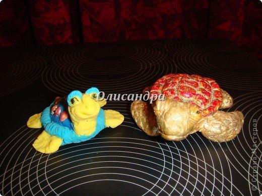 Я коллекционирую черепашек и пытаюсь делать их своими руками из различных материалов... . Фото 7
