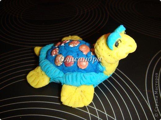 Я коллекционирую черепашек и пытаюсь делать их своими руками из различных материалов... . Фото 4