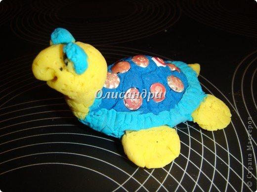 Я коллекционирую черепашек и пытаюсь делать их своими руками из различных материалов... . Фото 5