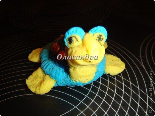 Я коллекционирую черепашек и пытаюсь делать их своими руками из различных материалов... . Фото 8