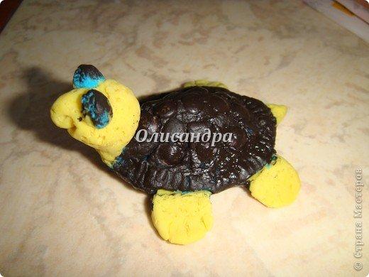 Я коллекционирую черепашек и пытаюсь делать их своими руками из различных материалов... . Фото 9