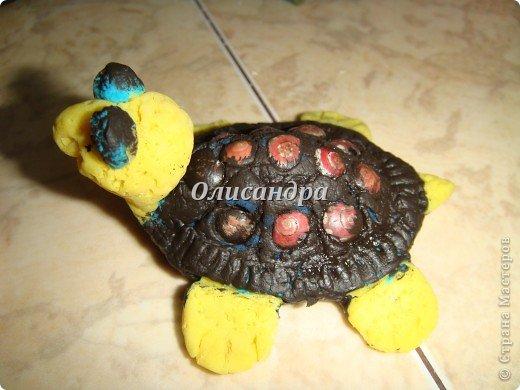Я коллекционирую черепашек и пытаюсь делать их своими руками из различных материалов... . Фото 10
