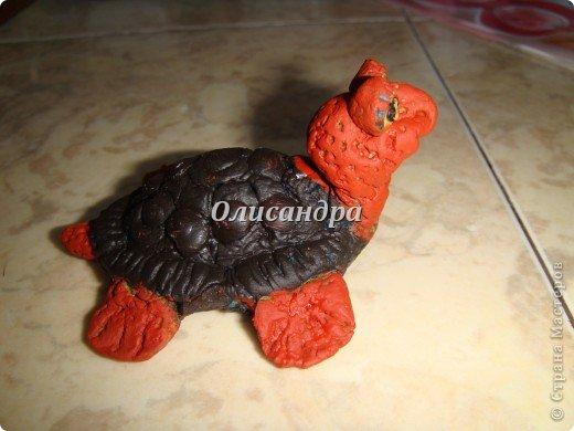 Я коллекционирую черепашек и пытаюсь делать их своими руками из различных материалов... . Фото 11