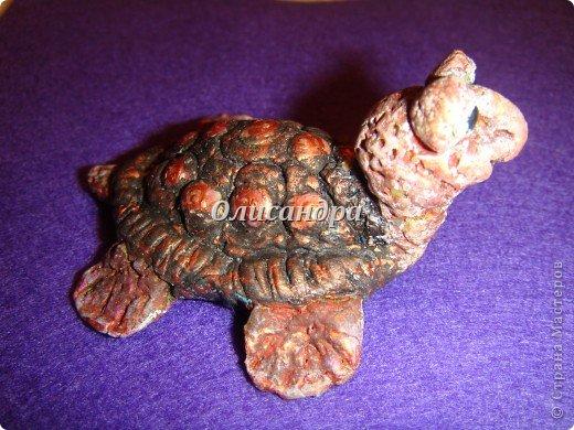 Я коллекционирую черепашек и пытаюсь делать их своими руками из различных материалов... . Фото 14
