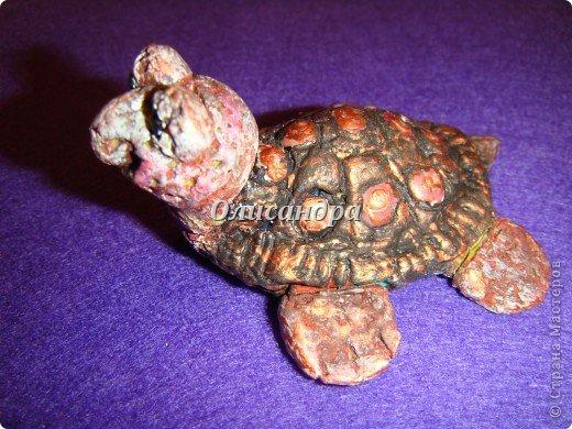 Я коллекционирую черепашек и пытаюсь делать их своими руками из различных материалов... . Фото 15