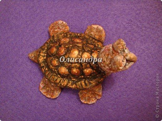 Я коллекционирую черепашек и пытаюсь делать их своими руками из различных материалов... . Фото 16
