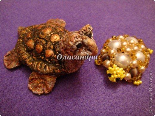 Я коллекционирую черепашек и пытаюсь делать их своими руками из различных материалов... . Фото 23