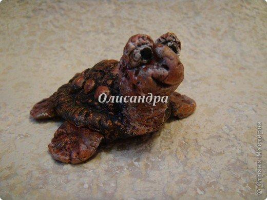 Я коллекционирую черепашек и пытаюсь делать их своими руками из различных материалов... . Фото 2