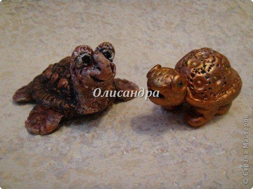 Я коллекционирую черепашек и пытаюсь делать их своими руками из различных материалов... . Фото 17