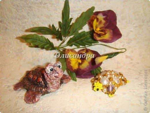 Я коллекционирую черепашек и пытаюсь делать их своими руками из различных материалов... . Фото 24