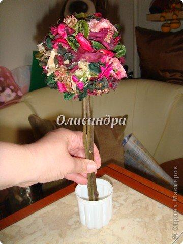 Здравствуйте, мои дорогие! Сделала небольшой презентик для подружки... топиарий из сухоцветов .... Фото 5
