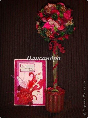 Здравствуйте, мои дорогие! Сделала небольшой презентик для подружки... топиарий из сухоцветов .... Фото 1