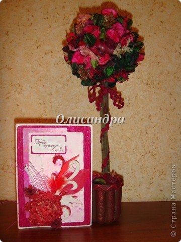 Здравствуйте, мои дорогие! Сделала небольшой презентик для подружки... топиарий из сухоцветов .... Фото 17